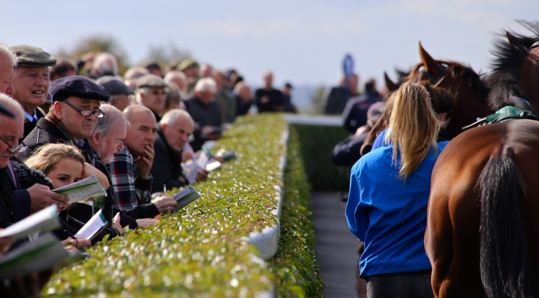 NavanRacecoursePackages